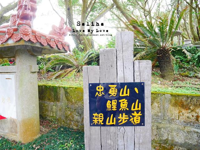 台北內湖一日遊踏青郊遊爬山碧山巖步道 (5)