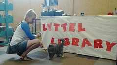 Little cat at Lyttel Library