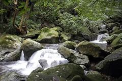 20160109 青山瀑布05