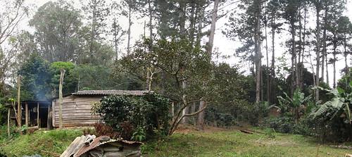 Topes de Collantes; une ferme de plantations de café et bananiers
