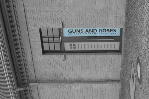 Guns and Roses 5