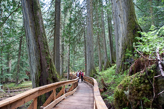 Most provincial parks and recreation sites will be open over the Victoria Day long weekend, but anyone planning to head outdoors should first check road conditions and visit the BC Parks website and Recreation Sites and Trails BC website for up-to-date information about site conditions, site closures and forest service road closures.