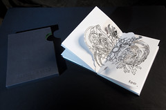 Algo brota en las redes (Libro de Artista 2015)
