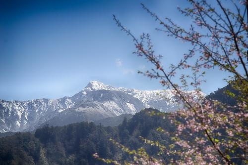 麟趾山上玉山群峰積雪 -3