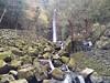養老山の滝