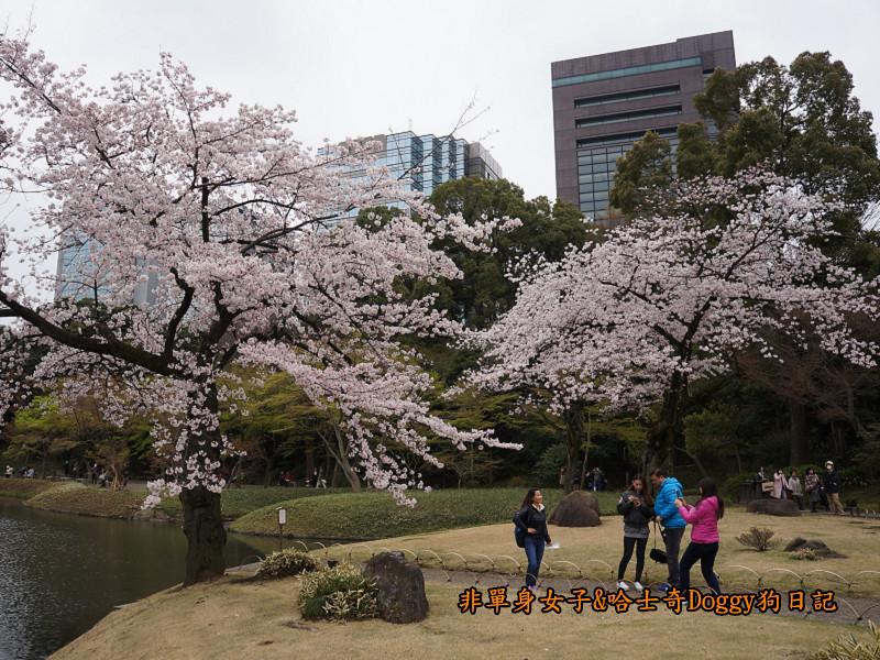 日本自由行小石川後樂園&東京巨蛋城08