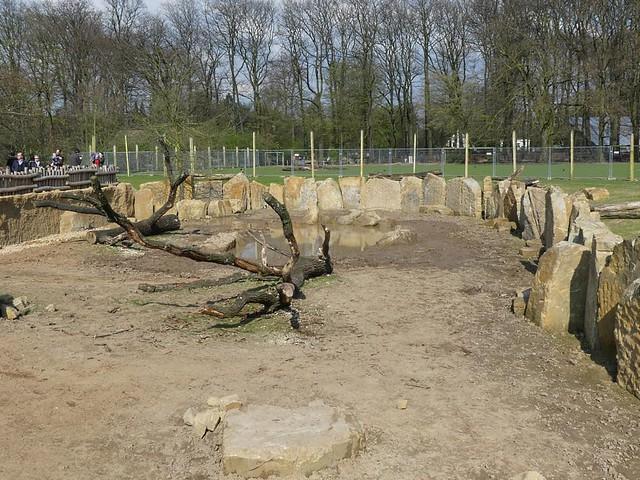 Nashornanlage, Zoo Krefeld