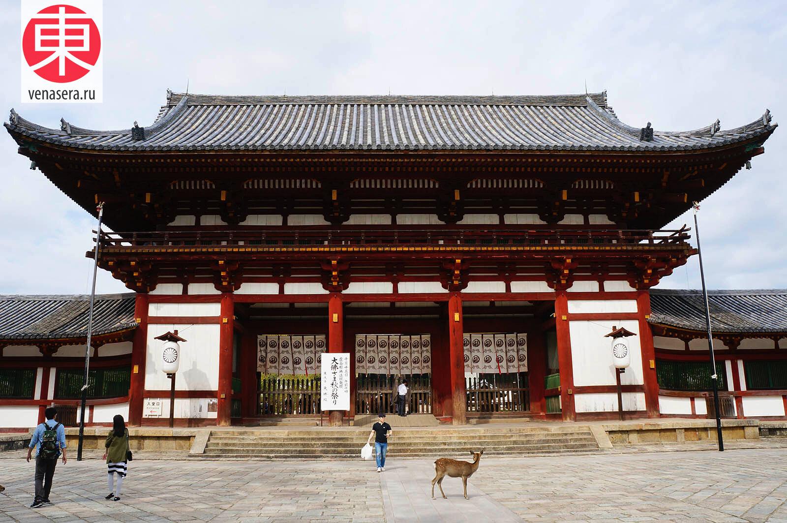 Храм Тодайдзи в Нара, Todaiji, Путешествие в Нара, Поездка в Нара, Олени в г. Нара, Парк Нара, Нара, Nara, 奈良, Япония, Japan, 日本.
