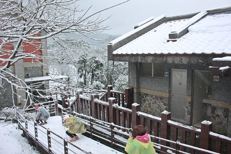 2016-台北陽明山-瑞雪-難得一見的雪白山景-17度C隨拍 (47)