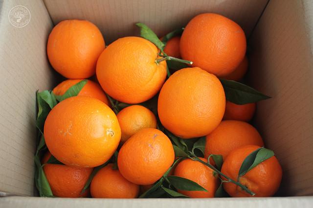Falso tocinillo de naranja www-cocinandoentreolivos.com (1)