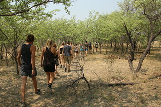Rhino walk, Matopos National Park