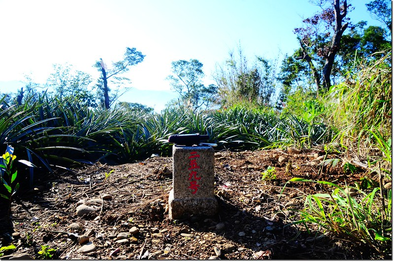 江西林山三等三角點(#259 Elev. 251 m) 1
