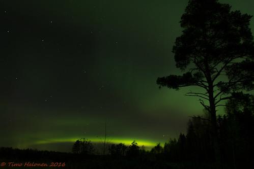 sky night stars nikon aurora borealis dx yö taivas tähdet laihia revontulet ostrobothnia eteläpohjanmaa d5200 isokylä