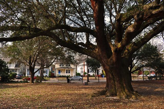 Westover Memorial Park (2)