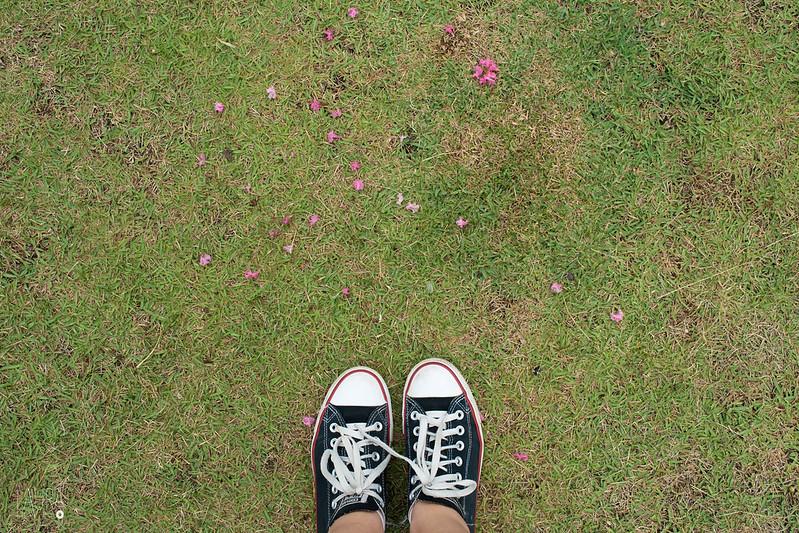 E a minha casa é onde vão meus pés...
