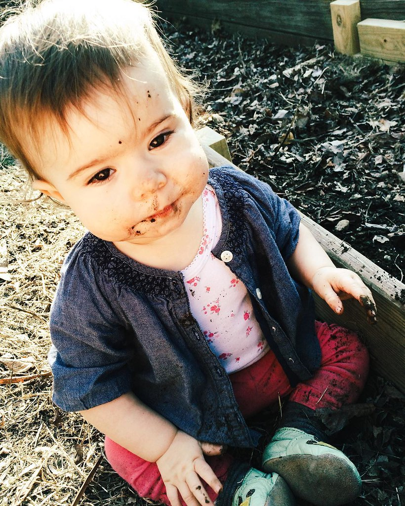 We spent this afternoon getting reacquainted with our garden's soil; some of us more than others. #gardening #springiscoming #springtime #children #childhood #eatdirt #instasinclair
