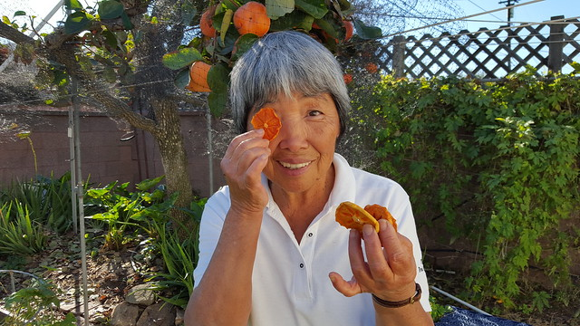 Dried Persimmons made by Mom