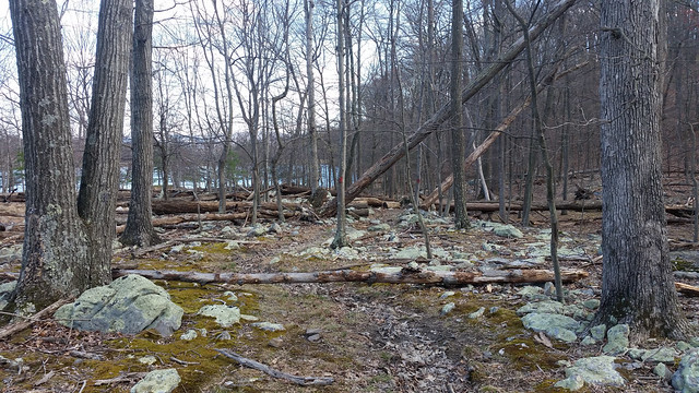 20160402_Cacapon_State_Park_043