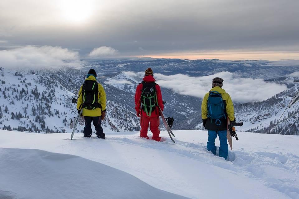 Snowbird snowboarders