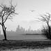 January Skyline by Andy Marfia