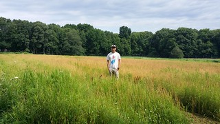 Carol Auer's graduate student Richard Rizzitello stands in a camellina field.