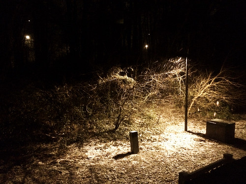 First Snow (January 26 2015)