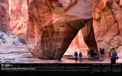 November 2016 Calendar in Honor of #conservationlands15: Desktop Wallpaper 16.9 (Widescreen)   Resolution
