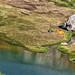 Lago Bianco - Ticino - Svizzera by Felina Photography