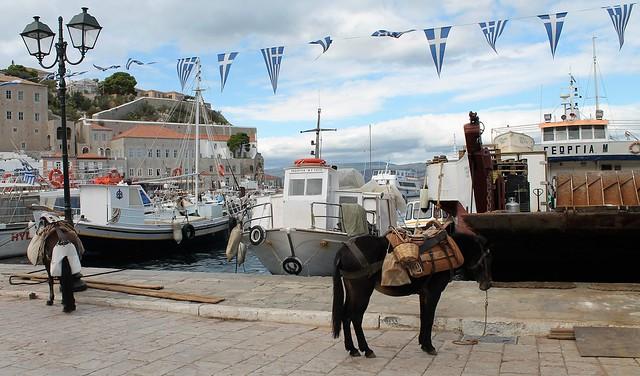 donkey port hydrae
