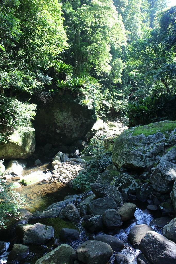 Minnemurra falls