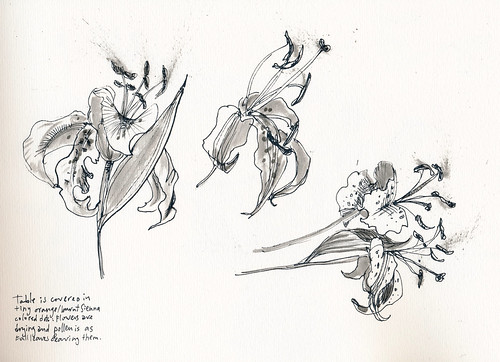 Sketchbook #94: Last Days of My Lilies