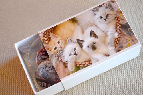 Shop_PIN_BOX_1