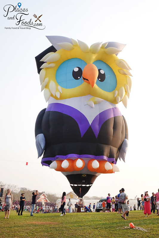 singha park international hot air balloons owl balloon