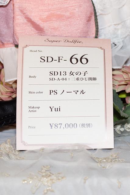 HTドルパ京都13 フルチョイスワンオフ SD F-66