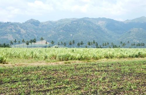 P16-Negros-San Carlos-Dumaguete-Route (43)