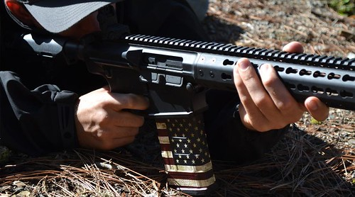 AR-10 Mag Skin in America Pattern