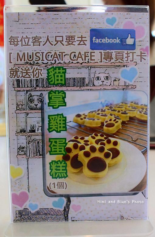 東區拉花貓咪餐廳musicat cafe05