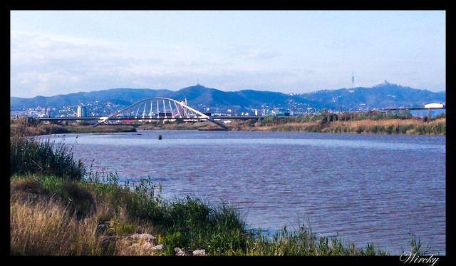 Puente Nelson Mandela Barcelona desde Delta del Llobregat