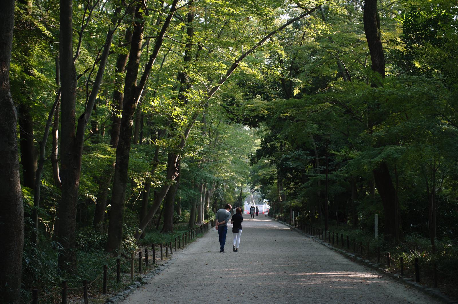 2015VQ@Kyoto-637