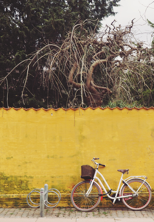 Copenhagen bicycle