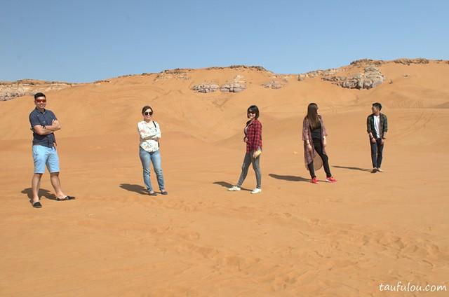 desert (2).NEF