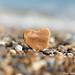 Love the Beach by SimonTHGolfer