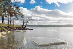 Ice Floe | Kaunas Sea