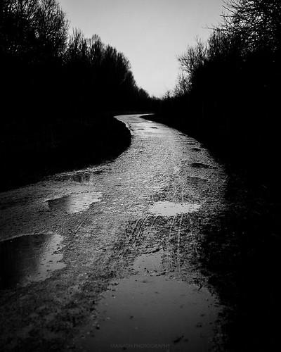 In the Rain // 30 01 16