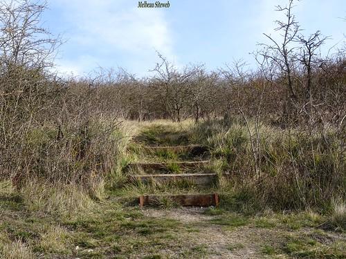 Sur les hauteurs de l'étang de Mézières-Ecluzelles