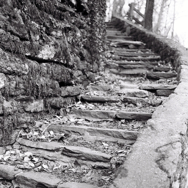 Livzey Stair 3