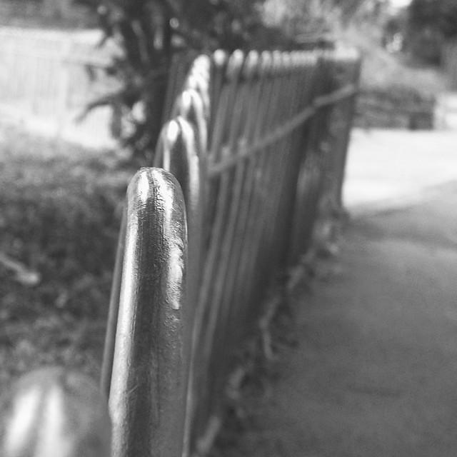A fence for Thursday, Fujifilm FinePix JV100