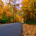 Mon, 10/22/2012 - 2:30pm - glen_miller_park_road Fall
