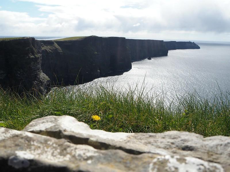 cliffsofmoherP4161084h, the cliffs of moher, cliffs of moher, rantakalliot, view, maisema, atlantic ocean, atlantti, atlantin valtameri, ruoho, green, grass, kukka, flower, jyrkänne, kallio, cliffs, rock, meri, sea, sun, aurinko, retki, nähtävyys, sightseeing, popular, suosittu, ireland, irlanti, burren, doolin, claren kreivikunta, lounais burren