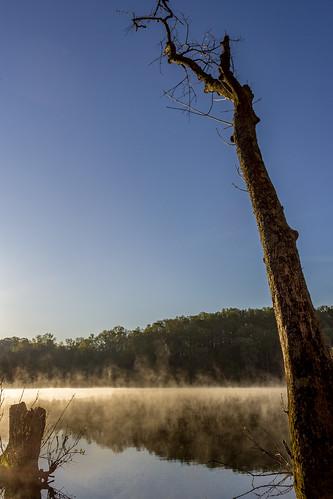 trees sky reflection water sunrise landscape us nc scenery unitedstates northcarolina mtholly mountholly catawbariver gastoncounty